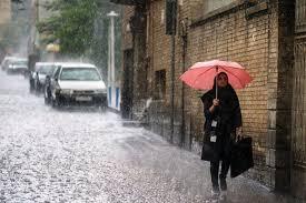 هشدارهای هواشناسی بوشهر درباره احتمال آبگرفتگی در هفته جاری +جزئیات